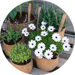 UGroBag Rond met handvaten tuin