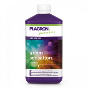 green_sensation