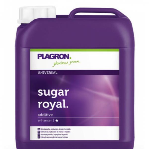 plagron_sugar_royal
