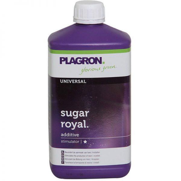 royal sugar
